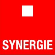 synergie logo vzw de steiger
